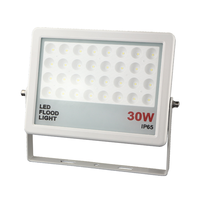 Power projector led flood light 30W aluminum housing