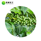 100% Green Coffee Extract High Quality 100% Pure Natural Green Coffee Bean Extract Powder Price