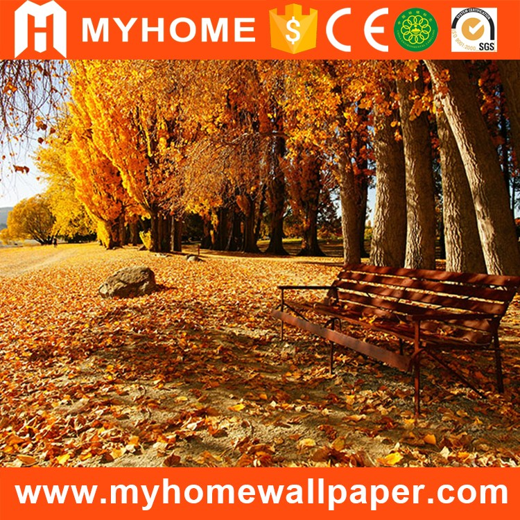 Widely used in various application plastic photo wallpaper waterproof wall mural 3d