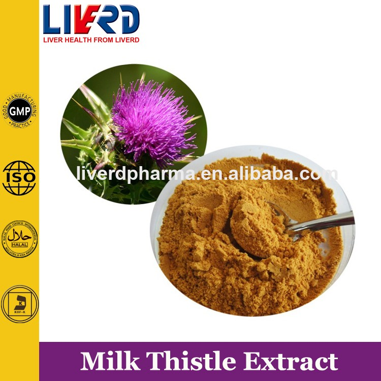 Free Sample Milk Thistle Extract Silymarin Powder 80% by UV