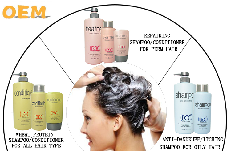 professional factory hair color protective Shampoo promotion price Hair Shampoo