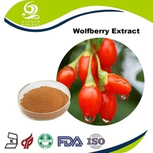 anti-aging product Goji Berry extract producer with cGMP standard
