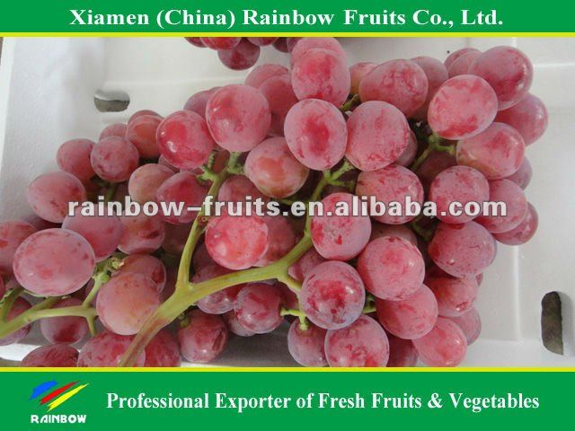 Chinese fresh delicious red table globe grape wine grapes