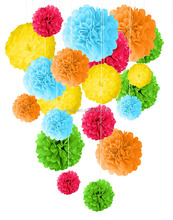 Tissue Paper Pom Poms Decoration Rainbow Theme Decoraton Idea Latest party Decoration