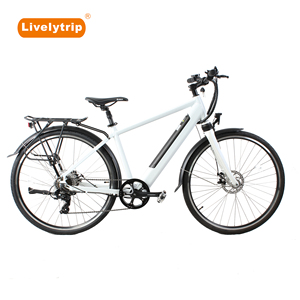 Fashion China new type 700C rear hub motor city e bike/electric bicycle
