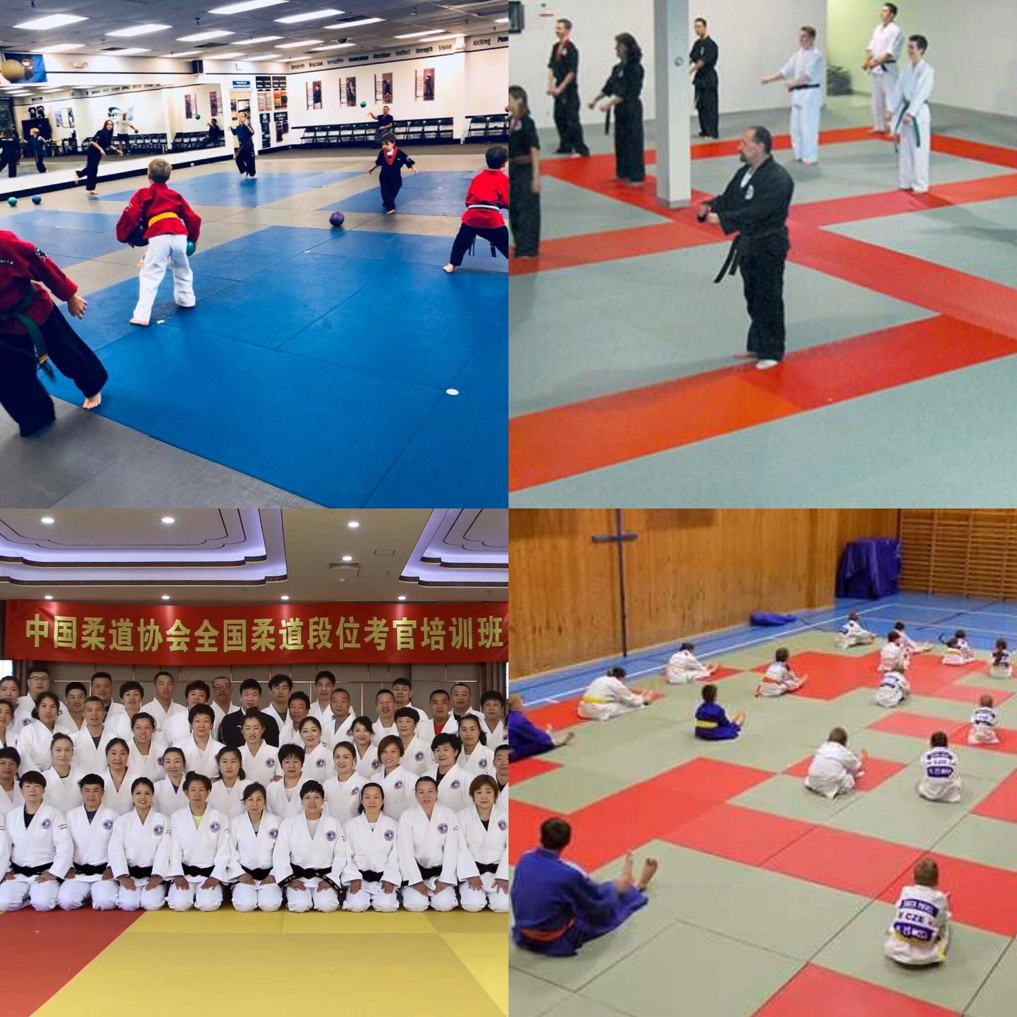 SGS Zertifiziert kinder spielen matten Teppich Wushu In Linyi