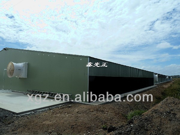 cheap prefabricated poultry house steel broiler shed with automatic feeder for sale