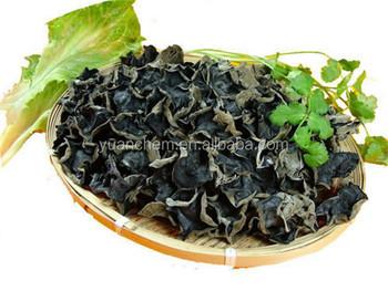 мухомор черный фото