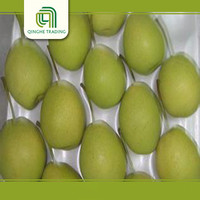 Hot selling fresh bulk purchase shandong pears with high quality