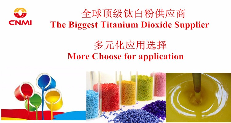 High Quality Nano Titanium Dioxide Food Grade 99% Pigment Nano Average Size 1-100 nm Cosmetics Pharmaceutical Grade for Food