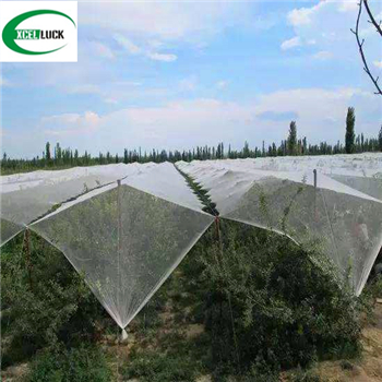 Scaffold Netting Building Safety Fence Debris HDPE Netting for Construction