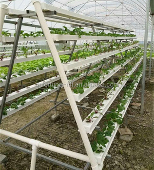New Agricultural Technology Greenhouse Gutter Indoor