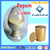 raw material Pepsin on sale in china (9001-75-6)/High quality Pancreatin powder