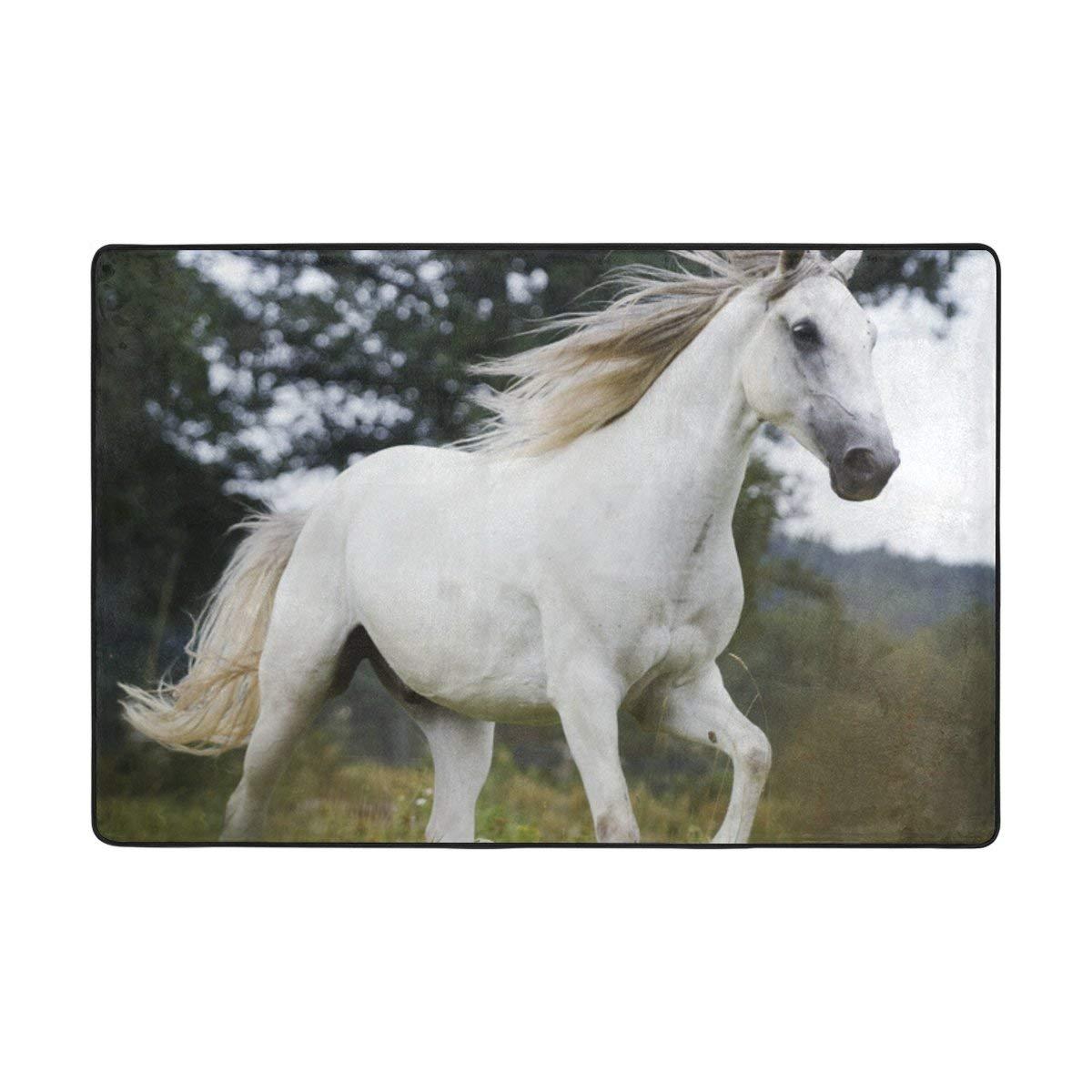 Lightweight Horse Rug Find