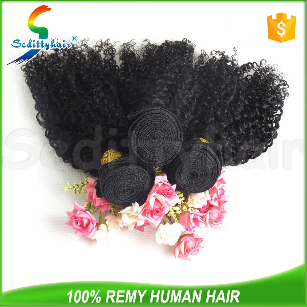 2015 NEW Kinky Curl brazilian human hair wet and wavy weave