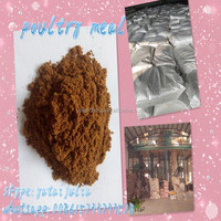 POULTRY MEAL STANDARD QUALITY 60% (factory direct sale)