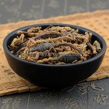 10016 Quan xie Chinese Traditional Medicine Wholesale Dried Scorpion for Sale