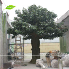 artificiale grande <span class=keywords><strong>bonsai</strong></span> <span class=keywords><strong>banyan</strong></span> di 18ft alto per abbellimento del giardino decorazione uso interno