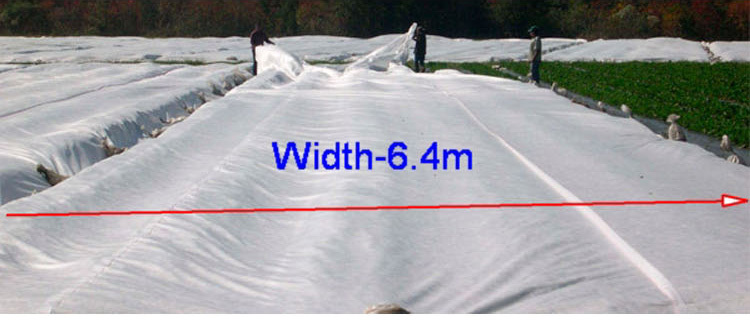 17GSM/M2 Agriculture Non Woven Fabric with 3%UV