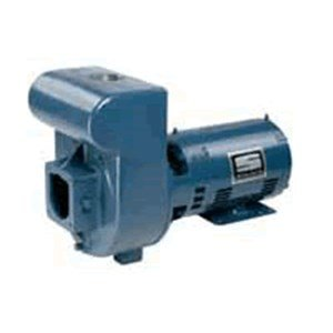 Pentair DMJ3-172 3-Phase Medium Head D-Series Self-Priming Centrifugal Commercial Pool Pump, 230/460-Volt, 5 HP