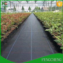high quality black plastic woven fabric/pp woven landscape fabric/weed control fabric