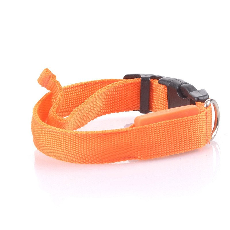 New design hotsell led dog training collar pet collar flashing led dog collar with great price