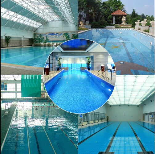 Olympic Swimming Pool In Person: Hayward Swimmingpool Equipments