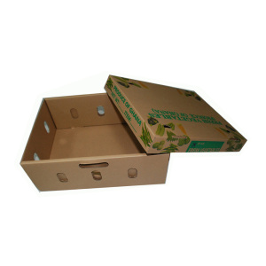 Double wall corrugated cardboard shipping box for fruit and vegetable packaging