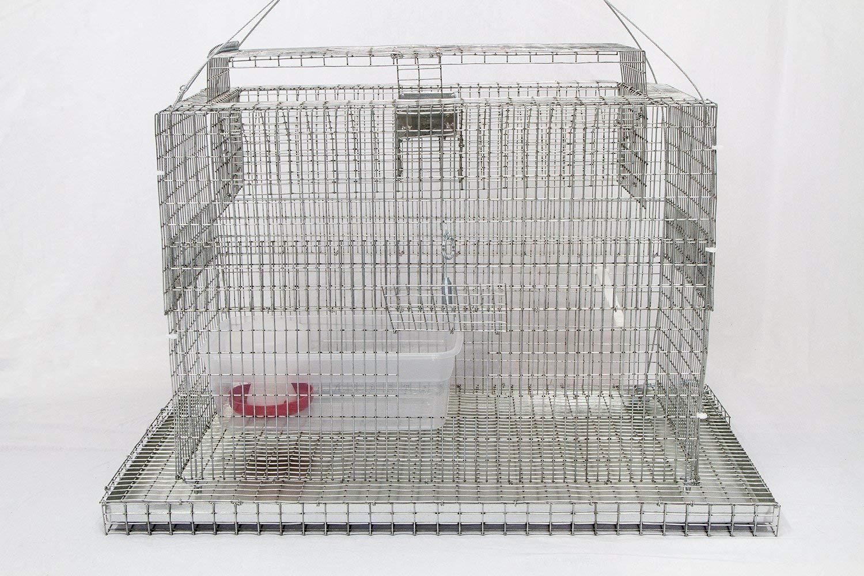 Cheap Bird Nets Trap, find Bird Nets Trap deals on line at