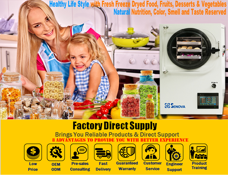 Small Home Food Mini Freeze Dryer For Vegetable Fruit