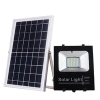 LED Light 30W New LED Patriot Lighting Products Decoration Light Outdoor Solar Flood Light