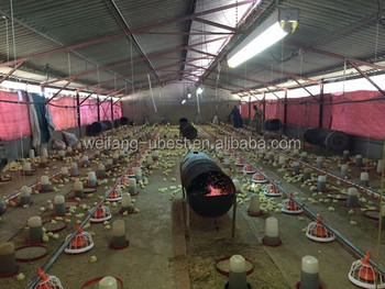 https://sc01.alicdn.com/kf/HTB1r1n0KXXXXXX8XpXXq6xXFXXXm/poultry-farm-business-plan-in-marathi-language.jpg_350x350.jpg