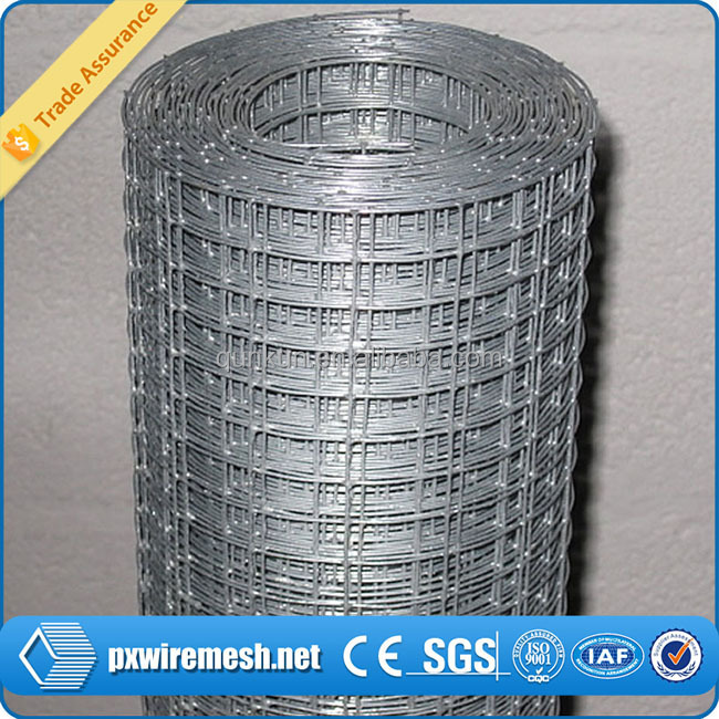 China Supplier Welded Iron Wire Mesh Sizes 50x50 Panel/roll Made ...