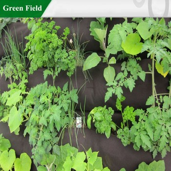 Green Field Vertical Garden Kits Systems With Drip Irrigation