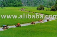 Travel Tours in vietnam, Travel company cooperation