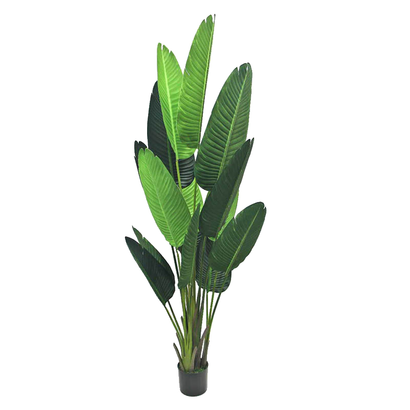 Top Selling Plastic Artificial Banana Tree Plants Fake Bonsai Plant Tree Bonsai Tree Plant Plastic Tree Buy Fake Bonsai Banana Plant Tree Top Selling Plastic Artificial Banana Tree Plants Artificial Banana Tree Product On Alibaba Com