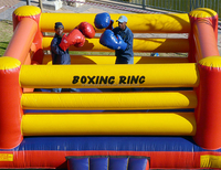 2019 New adult inflatable boxing for interaction games