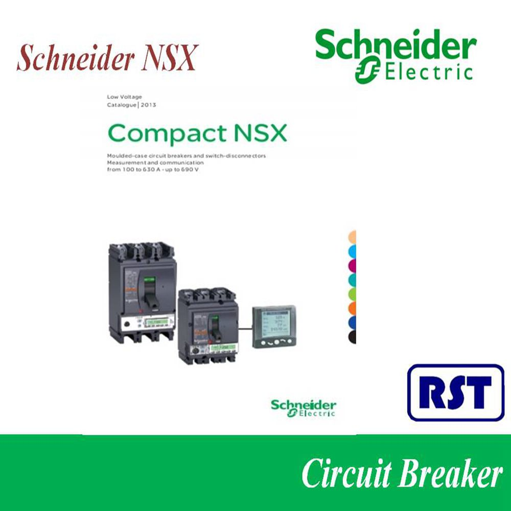 switchable Schneider earth leakage circuit breaker 63a