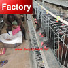 Trade Assurance recycle chicken duck cage for poultry farm
