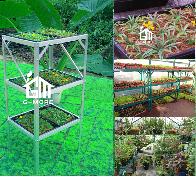G-MORE 3 Tier Greenhouse Shelving with 6 Seed Trays / Seed Propagator At Factory Price