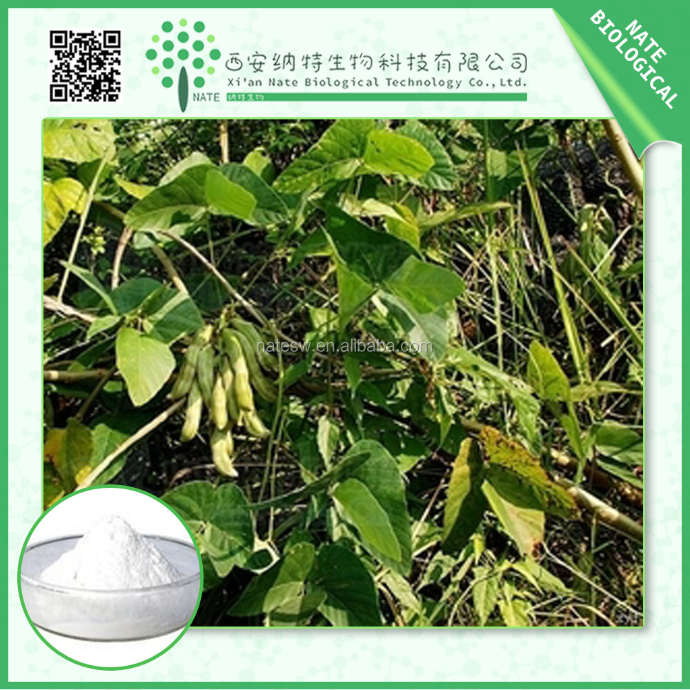 High Quality Bottom Price Chinese Mucuna Pruriens Extract 95% L-dopa
