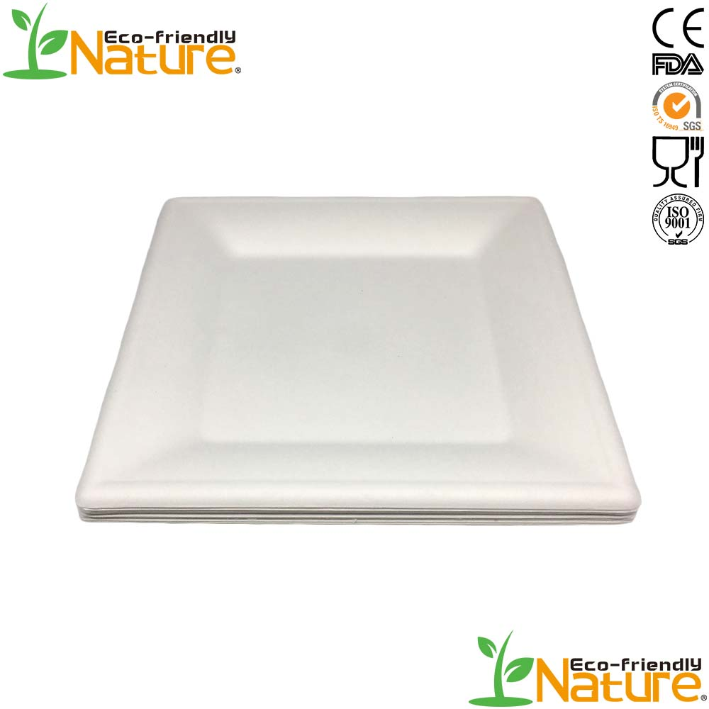 FDA Top Quality Chinese Supplier Square Bagasse Healthy <strong>Plate</strong>