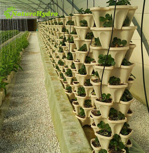 Vertical Hydroponic Tower Growing Systems