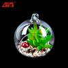Factory direct sale geometric glass terrarium wholesale with artificial succulent plants