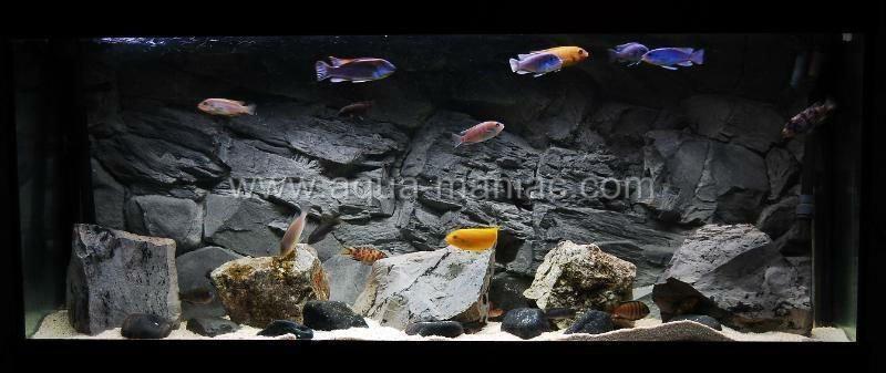 Aquarium Dark Rock Background Real 3d No Foam Buy Aquarium