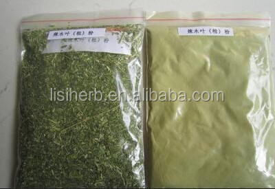 Wholesale Whole food supplements moringa capsules for sale /bulk ...