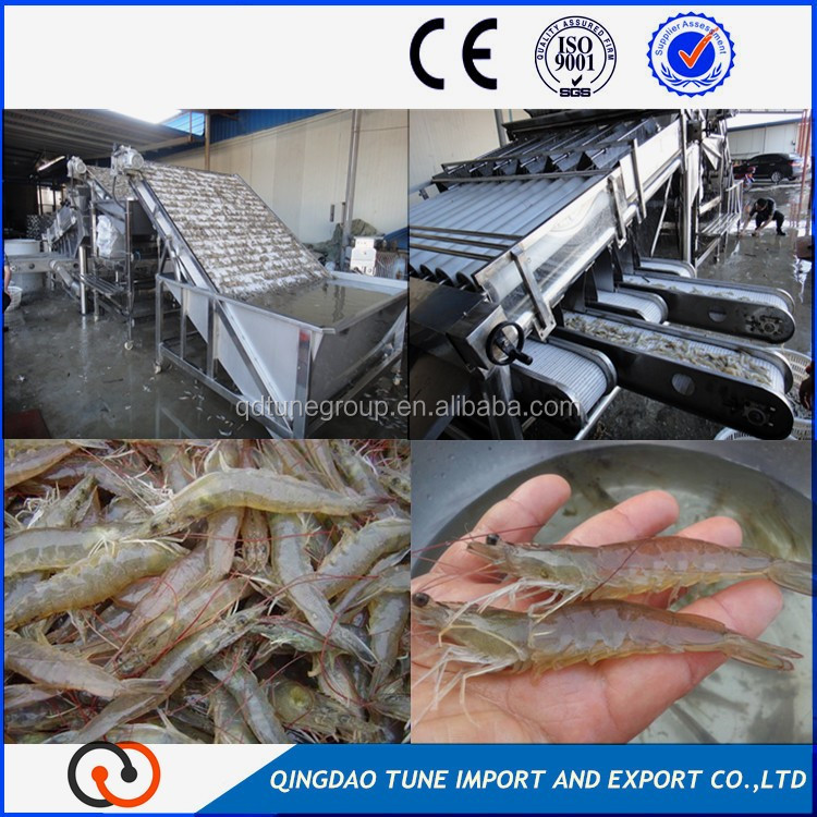 crawfish grader machine fresh shrimps processing machine
