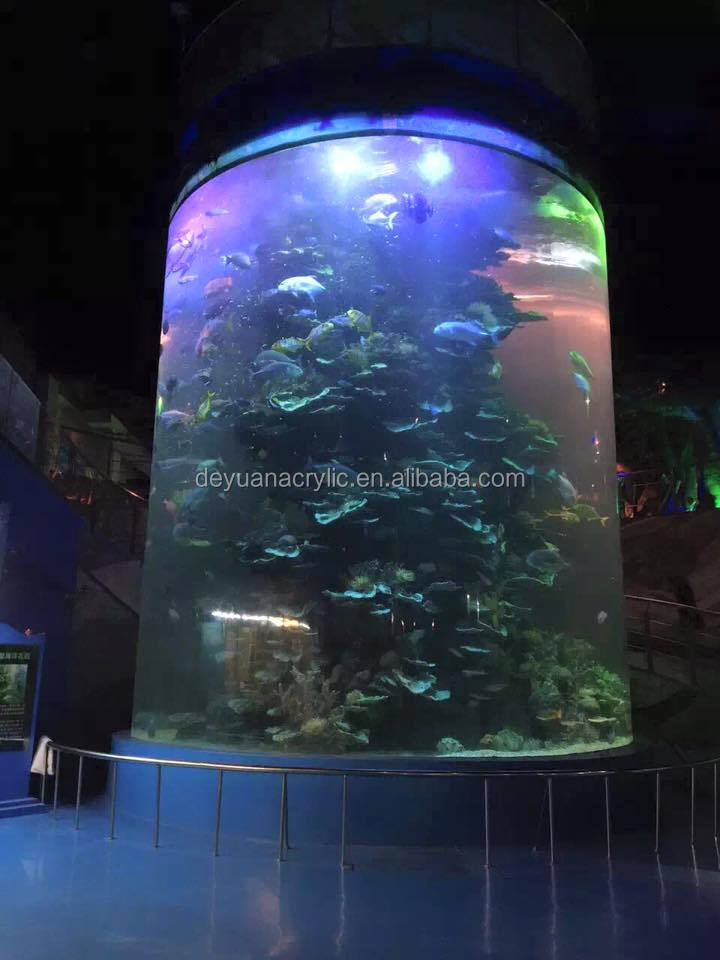 Large Public Round Acrylic Tube Aquarium