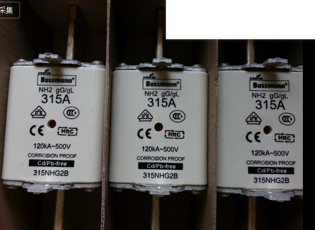Hot Sale: Hot sell : Fuses: NH2-315A 500V 120KA gG/gL (315NHG2B)
