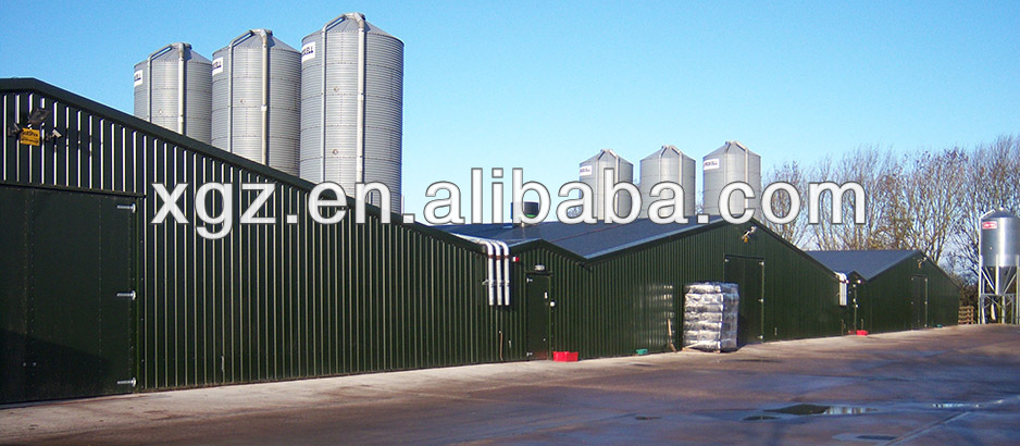 best selling design modern chicken farm for sale in south africa